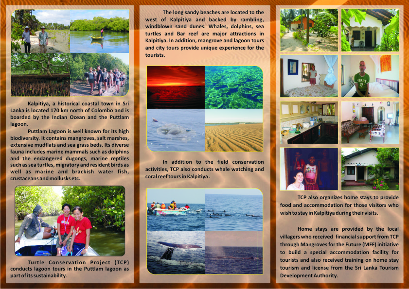 essay about tourism in sri lanka Bachelor thesis in tourism studies sri lanka as a potential tourism destination pre-visitation images of sri lanka among swedish youth and student travelers.